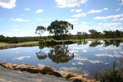 Árboles y reflexión de las nubes Imagenes de archivo