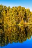 Árboles y reflexión del otoño en el agua de la charca Fotografía de archivo