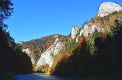 Árboles y rocas del otoño junto al río de Dunajec en el parque nacional de Pieniny, Eslovaquia foto de archivo