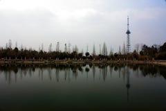 Árboles y torre Fotografía de archivo