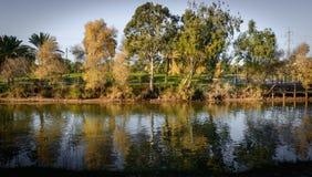 Árboles y una corriente en el parque en la puesta del sol Imagen de archivo