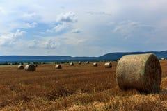 Área agrícola colorida Foto de archivo