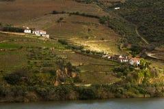 Área Alto Douro del lagar imagenes de archivo