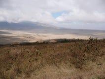 Área da conservação de Ngorongoro Fotografia de Stock Royalty Free