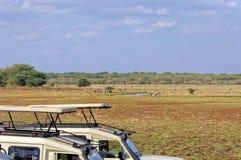 Área da conservação de Ngorongoro, TANZÂNIA Fotografia de Stock