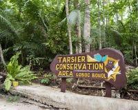 Área da conservação de Tarsier em Lobol, ilha de Bohol Foto de Stock