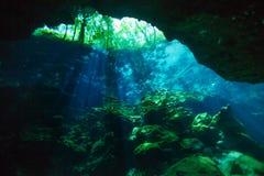 Área da entrada da caverna subaquática do cenote de Azul imagem de stock