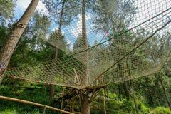 Área da floresta de Batu, Indonésia foto de stock
