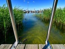 Área da natação com a escada do molhe e da nadada no lago Fleesen em Meclemburgo-Pomerania em Alemanha imagens de stock royalty free