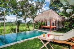 Área da piscina exterior da casa de campo luxuosa de Bali Foto de Stock Royalty Free