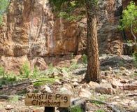 Área de escalada do porco do assobio em Colorado Fotografia de Stock