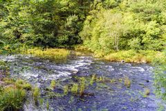 Área de las corrientes fuertes del río Eume en Galicia A muy shal Foto de archivo