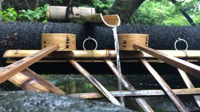 Área de limpiamiento en el templo de Anyoji, Shiga, Japón almacen de metraje de vídeo