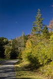 Área de Mtn do bálsamo, outono Foto de Stock