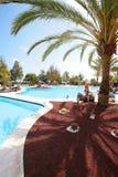 Área de piscina con una palma fotografía de archivo