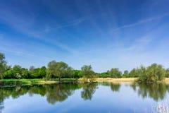 Área de protección de naturaleza con los árboles un pequeño lago en la sol Imagen de archivo