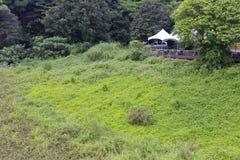 Área de recreação densa da floresta no ponto cênico do wulaokeng Foto de Stock Royalty Free