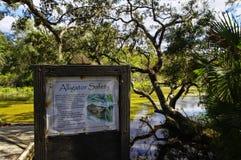 A área de recreação na floresta nacional de Ocala situada em Juniper Springs Florida imagem de stock royalty free