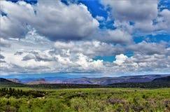 Área de região selvagem da garganta de Salt River, floresta nacional de Tonto, Gila County, o Arizona, Estados Unidos fotografia de stock royalty free