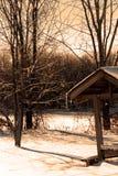 Área de repouso perto das madeiras Foto de Stock Royalty Free