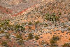 Área de yermo de montañas de la presa del castor fotografía de archivo