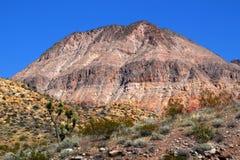 Área de yermo de montañas de la presa del castor fotos de archivo libres de regalías