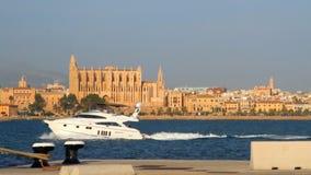 Área del agua del puerto del yate que entra Palma de Majorca, España almacen de video