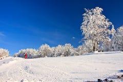 Área del esquí Fotos de archivo libres de regalías