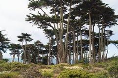 Área del final de las tierras, San Francisco Bay fotografía de archivo libre de regalías