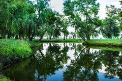 Área del parque con un lago hermoso fotografía de archivo