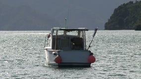 Área del picton del barco, Nueva Zelandia almacen de video