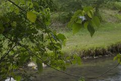 Área del Riverbank fotos de archivo libres de regalías