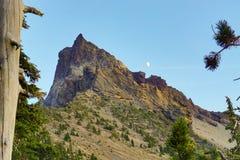 Área do deserto do verão da composição da árvore da lua da montanha imagens de stock royalty free