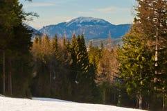 Área do esqui Fotos de Stock