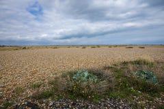 Área do ` s do wordl a grande da telha - Dungeness, Kent, Inglaterra foto de stock