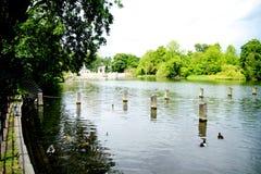 Área dos jardins e do Hyde Park de Kensington Fotografia de Stock Royalty Free