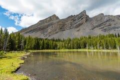 Área dos lagos do frasco da salmoura no verão Imagens de Stock