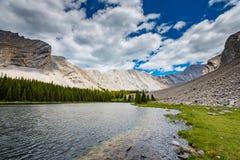 Área dos lagos do frasco da salmoura no verão Fotos de Stock Royalty Free