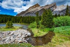 Área dos lagos do frasco da salmoura no verão Foto de Stock Royalty Free