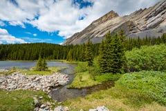 Área dos lagos do frasco da salmoura no verão Fotografia de Stock