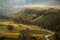 Área e pastagem de caça em China Fotografia de Stock Royalty Free