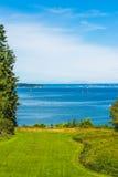 Área grande do gramado com árvores e fundo altos do mar e do céu azul Imagens de Stock Royalty Free
