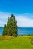 Área grande do gramado com árvores e fundo altos do mar e do céu azul Fotos de Stock