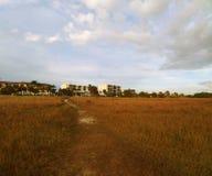 Área herbosa de la playa debajo de un cielo azul soleado brillante con las nubes mullidas blancas foto de archivo