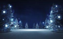 Área libre en bosque mágico que brilla del invierno Foto de archivo libre de regalías