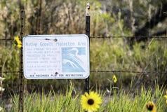 Área nativa de la protección del crecimiento Foto de archivo