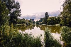 Área natural da água para nadar no parque Imagem de Stock