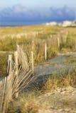Área natural de la playa de la duna de arena. Foto de archivo libre de regalías
