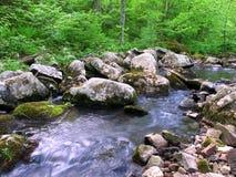 Área natural del estado hueco de Baxters Imagen de archivo libre de regalías