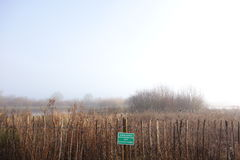 Área overgrown de la protección por un lago fotografía de archivo libre de regalías